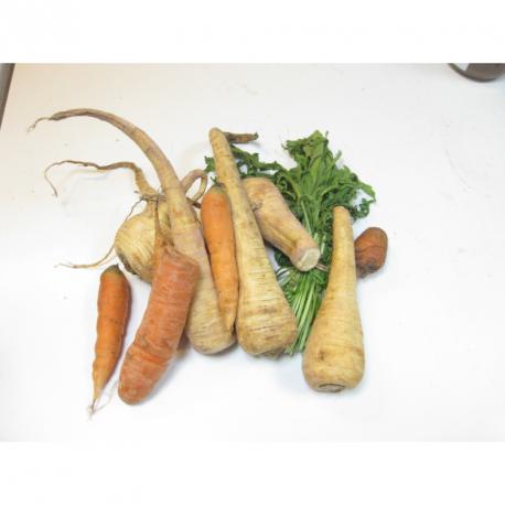 Tagliatelles de panais et carottes au pesto de roquette