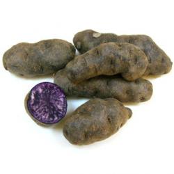 Pommes de terre Vitelotte bio (kg)