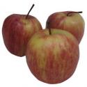 Pommes Royal Gala (1kg)- juteuse, parfumée