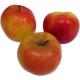 Pommes Idared (1kg)
