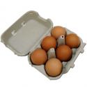 Oeufs extra-frais calibre moyen (x6)