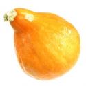 Potimarron (pièce environ 1.3-1.5kg)