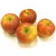 Pommes Elstar (1kg)