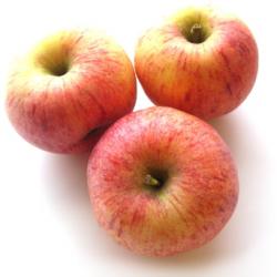 Pommes Royal Gala bio (1kg)