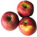 Pommes Crimson crisp bio (1kg) juteuse, croquante