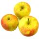 Pommes Pinova bio (1kg) (arôme pomme sauvage)