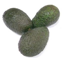 Avocat bio (3 pièces)