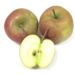 Pommes Fuji bio (1kg) - ferme, croquante, très douce