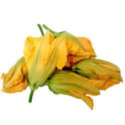 Fleurs de courgettes (6 pièces) - Récupération sur place le jeudi uniquement