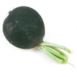 Navets noirs boule (kg)