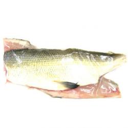 Fera du Léman (2 filets, 400g) - disponibilité selon pêche