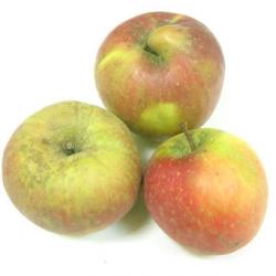 Pommes Rubinette bio (kg) - sucrée, fondante, acidulée