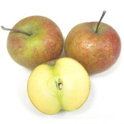 Pommes Dalinsweet bio (kg) - croquante, acidulée, juteuse, parfumée