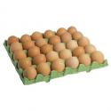 Oeufs extra-frais calibre moyen- sur place uniquement (x30)