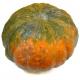 Potimarron d'hiver (pièce 1.8kg environ)