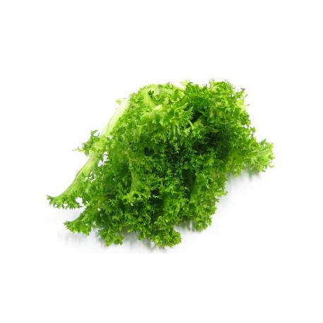 Salade frisée (pièce)