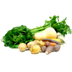 Panier de légumes bio (5kg)