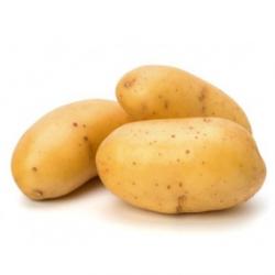 Pommes de terre bio (kg)