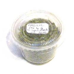 Basilic vert (4g)