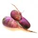 Radis longs violets (kg)