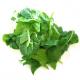 Epinards feuilles bio (500g)
