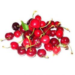 Cerises bio (500g)