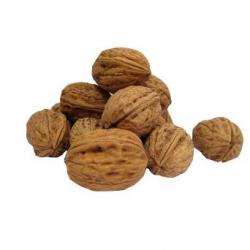 Noix fraîches (1kg)