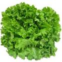 Salade batavia blonde bio (piece)