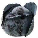 Chou rouge bio (piece 1kg environ)
