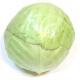 Chou blanc bio (piece 1kg environ)