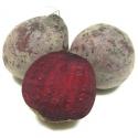 Betterave rouge crue (500g)