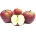 Pommes dalinette bio (1kg)
