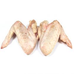 Ailes de poulet bio (x1kg environ)
