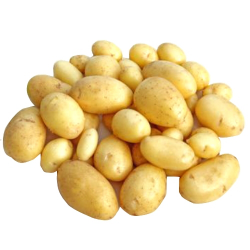 Pommes de terre nouvelles (1kg)