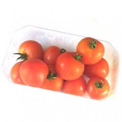 Tomates cocktail (500g)