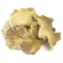Pleurotes fraîches (300g)
