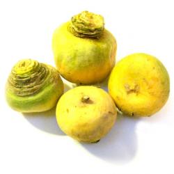 Navets jaunes boule (kg)