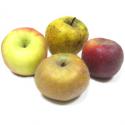 Pommes à compote bio (1kg) : dalinette, dalinsweet, opale...