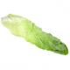 Salade pain de sucre (pièce)