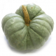 Courge tristar entiere