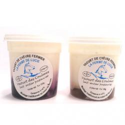 Yaourts de chèvre à la crème de marron (x4)