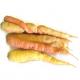 Carottes lavées bio (1kg)