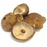 Shitakés frais (300g)