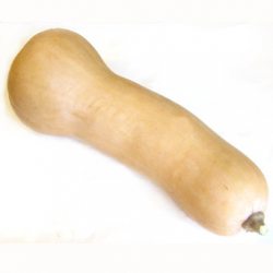 Courge butternut (grosse pièce 2kg)