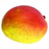 Mangue (pièce)- offre spéciale