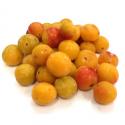 Prunes mirabelles bio (500g)