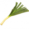 Poireaux bio (1 botte)