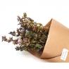 Sauge (1 bouquet séché)
