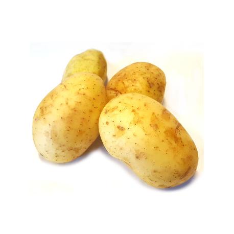 Pommes de terre Agata gros calibre (1kg)
