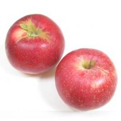 Pommes Akane bio (1kg) (chair blanche, tendre, aciduée)